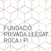 Small fundacio roca 1